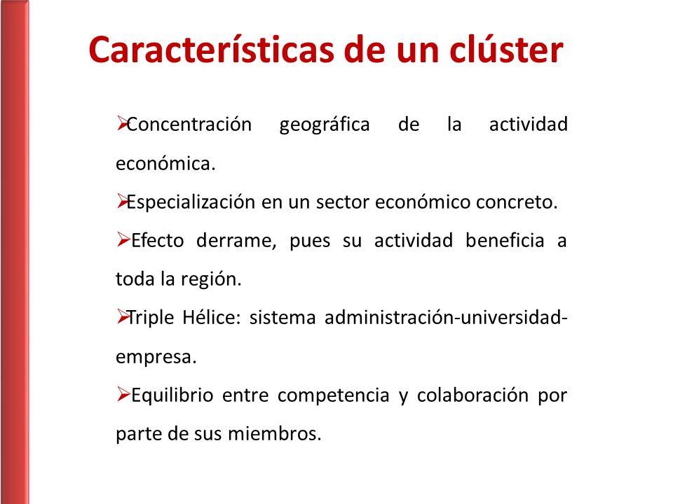Características de un clúster Concentración geográfica de la actividad económica. Especialización en un sector económico concreto. Efecto derrame, pue