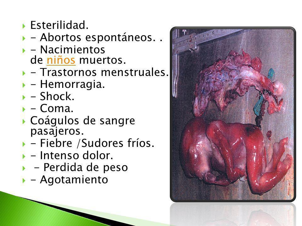Esterilidad. - Abortos espontáneos.. - Nacimientos de niños muertos.niños - Trastornos menstruales. - Hemorragia. - Shock. - Coma. Coágulos de sangre
