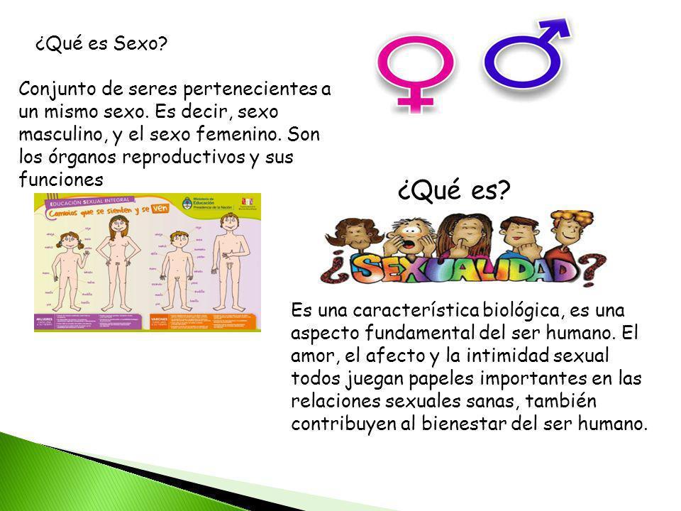 ¿Qué es Sexo? Conjunto de seres pertenecientes a un mismo sexo. Es decir, sexo masculino, y el sexo femenino. Son los órganos reproductivos y sus func