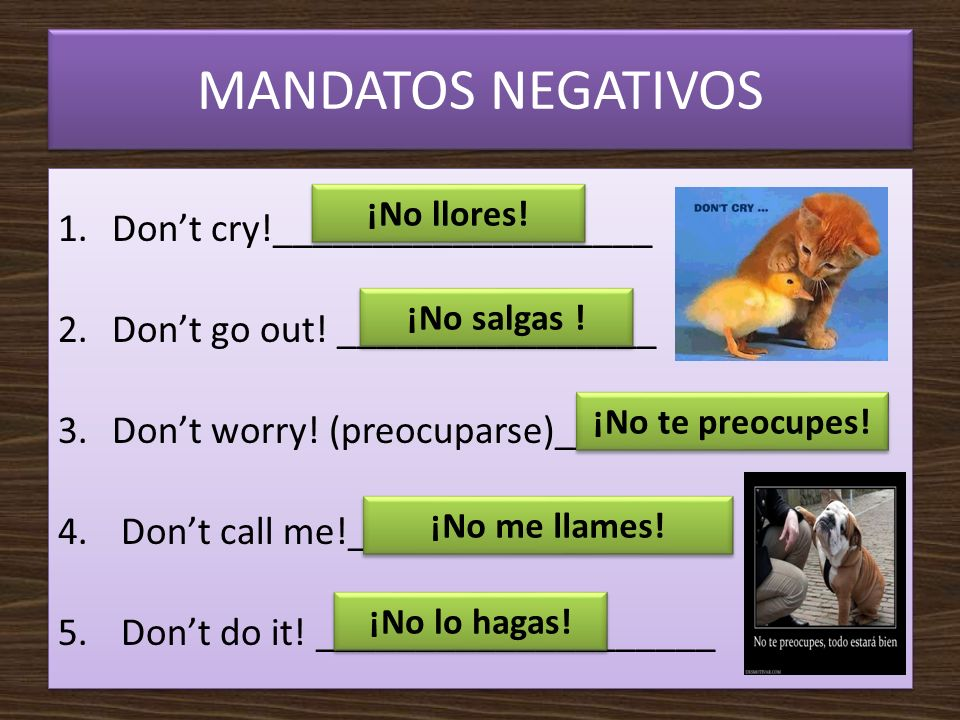 MANDATOS NEGATIVOS 1.Dont cry!___________________ 2.Dont go out! ________________ 3.Dont worry! (preocuparse)_______________ 4. Dont call me!_________