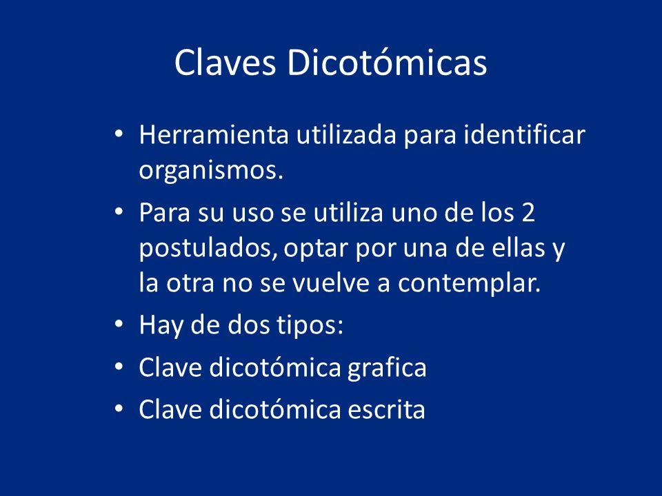 Claves Dicotómicas Herramienta utilizada para identificar organismos. Para su uso se utiliza uno de los 2 postulados, optar por una de ellas y la otra