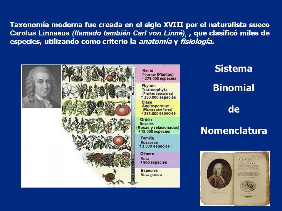 Taxonomía moderna fue creada en el siglo XVIII por el naturalista sueco Carolus Linnaeus (llamado también Carl von Linné),, que clasificó miles de esp