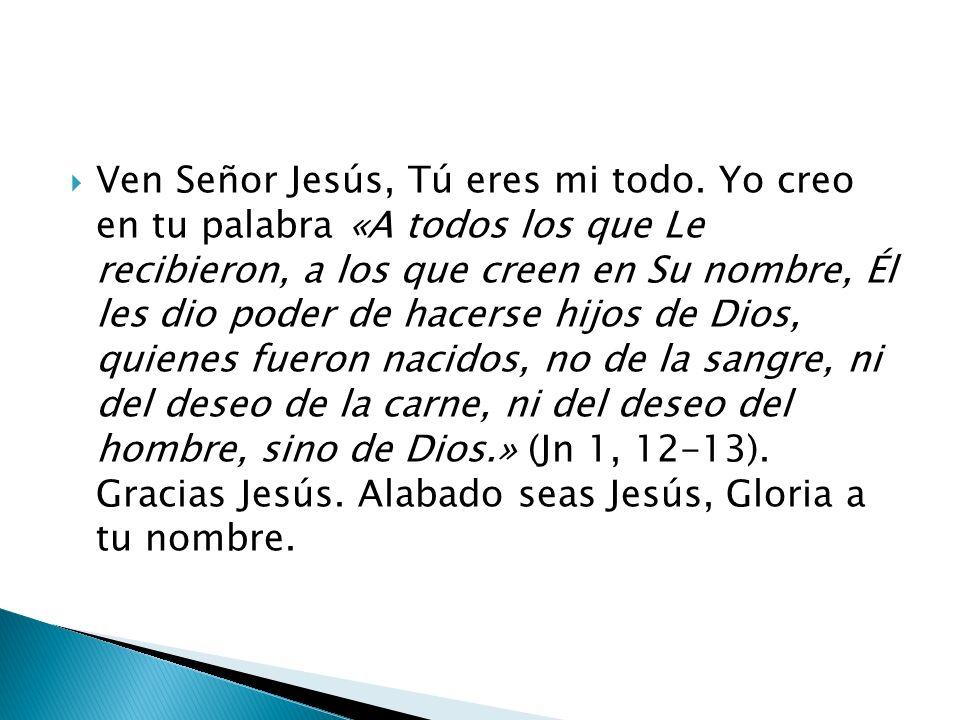 Ven Señor Jesús, Tú eres mi todo.