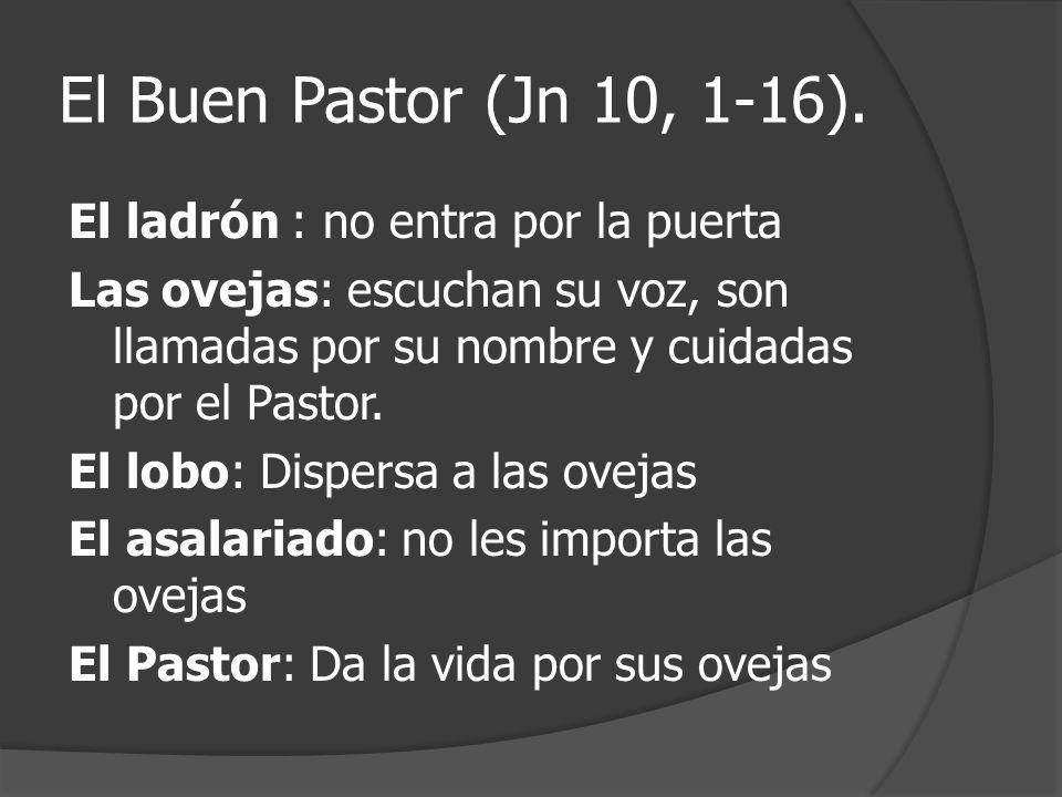 El Buen Pastor (Jn 10, 1-16). El ladrón : no entra por la puerta Las ovejas: escuchan su voz, son llamadas por su nombre y cuidadas por el Pastor. El