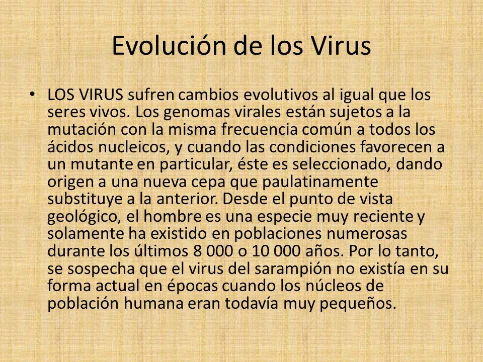 Evolución de los Virus LOS VIRUS sufren cambios evolutivos al igual que los seres vivos.
