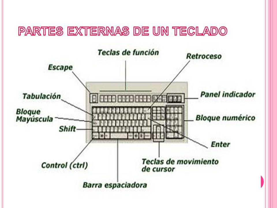 Son teclados normalmente diseñados para ser utilizados en Terminales de Punto de Venta (TPV), en los que mediante software se pueden programar todas sus teclas o parte de ellas para que realicen funciones concretas o accesos a partes determinadas de un programa.