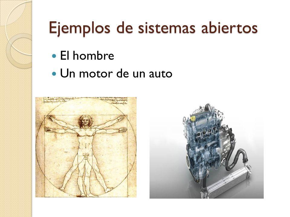 Ejemplos de sistemas abiertos El hombre Un motor de un auto