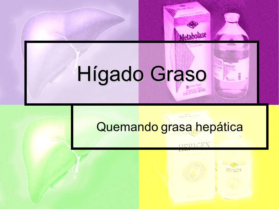 Hígado Graso Quemando grasa hepática