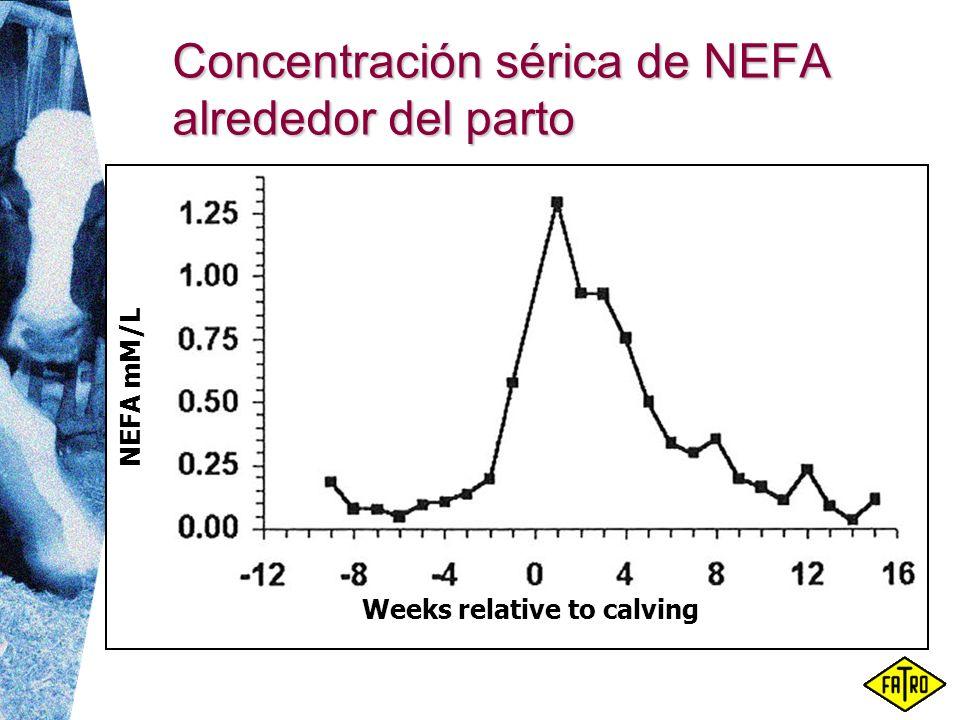 Concentración sérica de NEFA alrededor del parto NEFA mM/L Weeks relative to calving