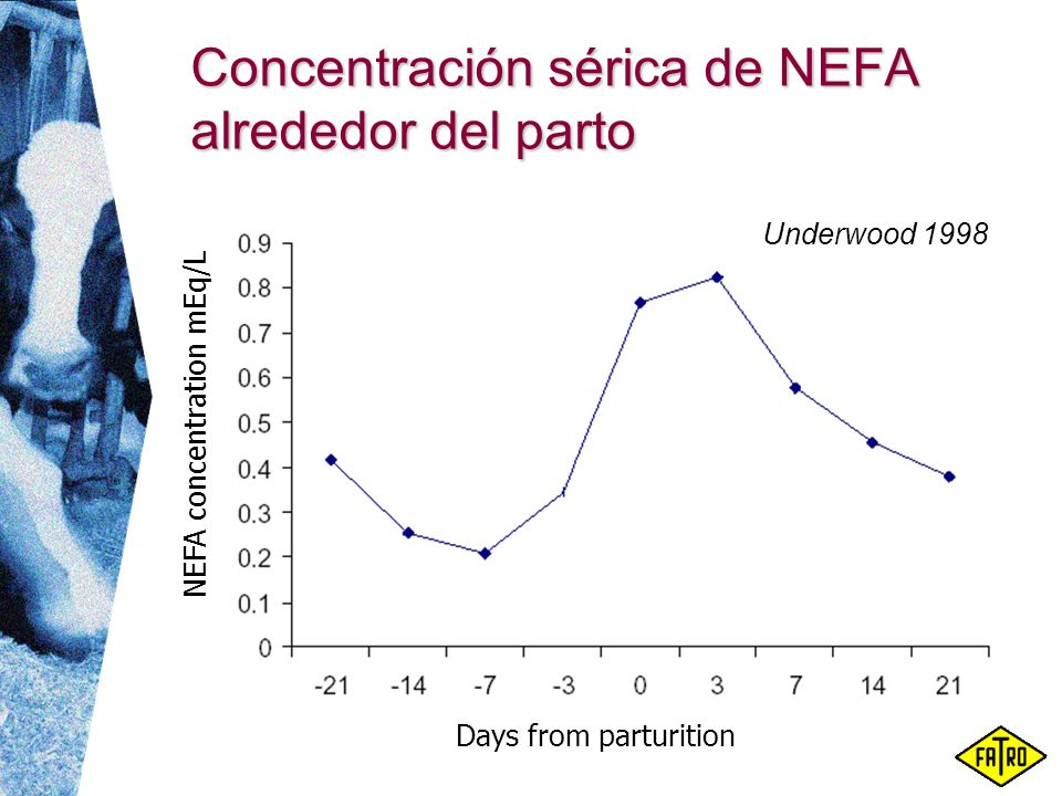 Concentración sérica de NEFA alrededor del parto NEFA concentration mEq/L Days from parturition Underwood 1998