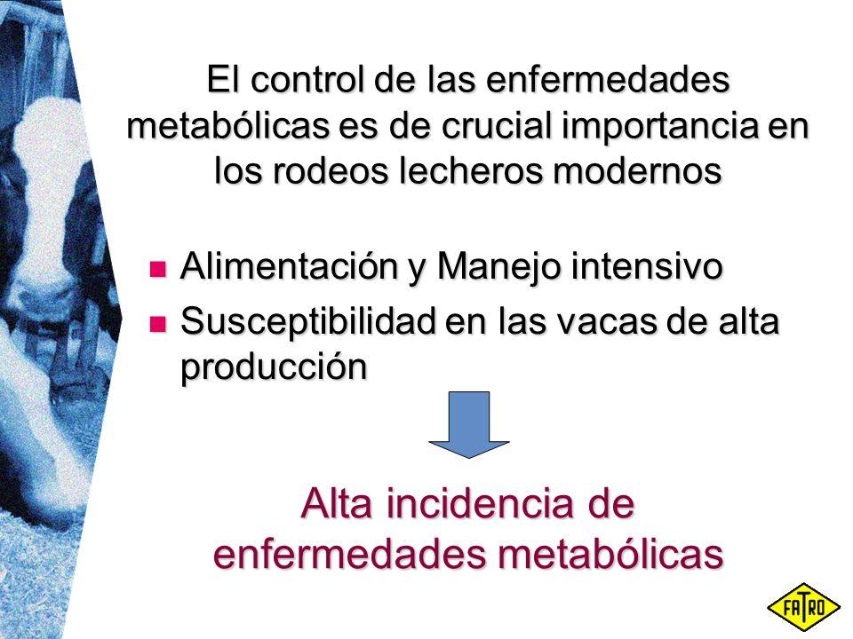 Alta incidencia de enfermedades metabólicas El control de las enfermedades metabólicas es de crucial importancia en los rodeos lecheros modernos Alime