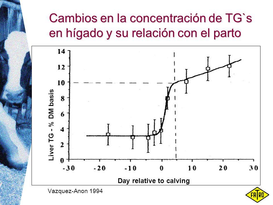 Cambios en la concentración de TG`s en hígado y su relación con el parto Liver TG - % DM basis Day relative to calving Vazquez-Anon 1994
