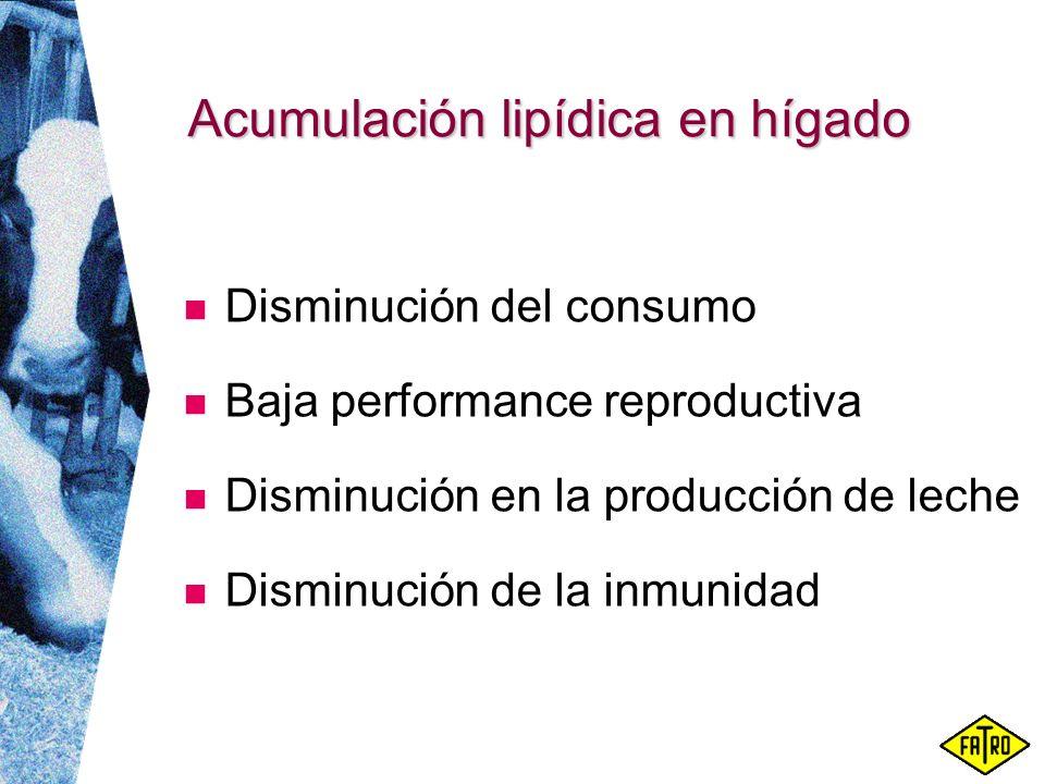 Acumulación lipídica en hígado Disminución del consumo Baja performance reproductiva Disminución en la producción de leche Disminución de la inmunidad