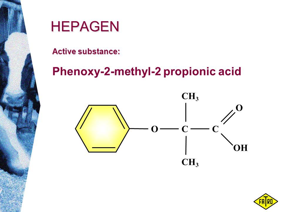 HEPAGEN Phenoxy-2-methyl-2 propionic acid OC CH 3 C OH O Active substance: