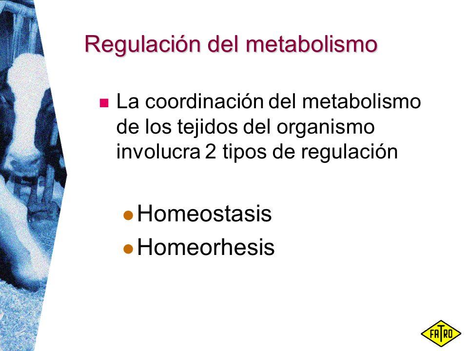Regulación del metabolismo La coordinación del metabolismo de los tejidos del organismo involucra 2 tipos de regulación Homeostasis Homeorhesis