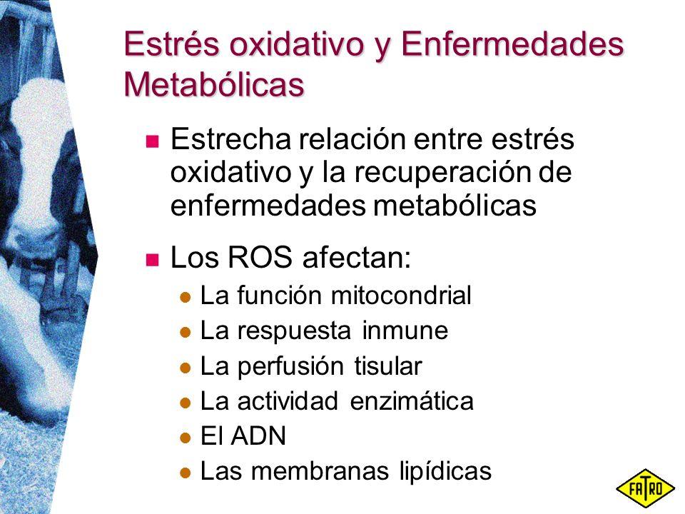 Estrés oxidativo y Enfermedades Metabólicas Estrecha relación entre estrés oxidativo y la recuperación de enfermedades metabólicas Los ROS afectan: La