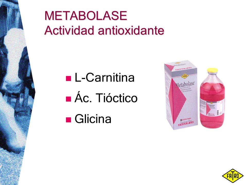 METABOLASE Actividad antioxidante L-Carnitina Ác. Tióctico Glicina