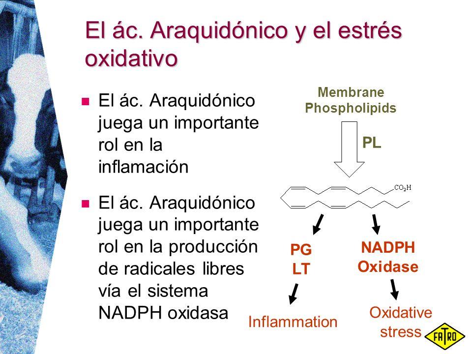 El ác. Araquidónico y el estrés oxidativo El ác. Araquidónico juega un importante rol en la inflamación El ác. Araquidónico juega un importante rol en
