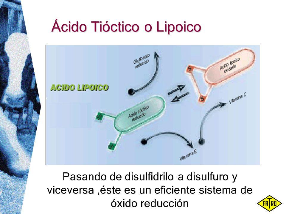 Ácido Tióctico o Lipoico Pasando de disulfidrilo a disulfuro y viceversa,éste es un eficiente sistema de óxido reducción