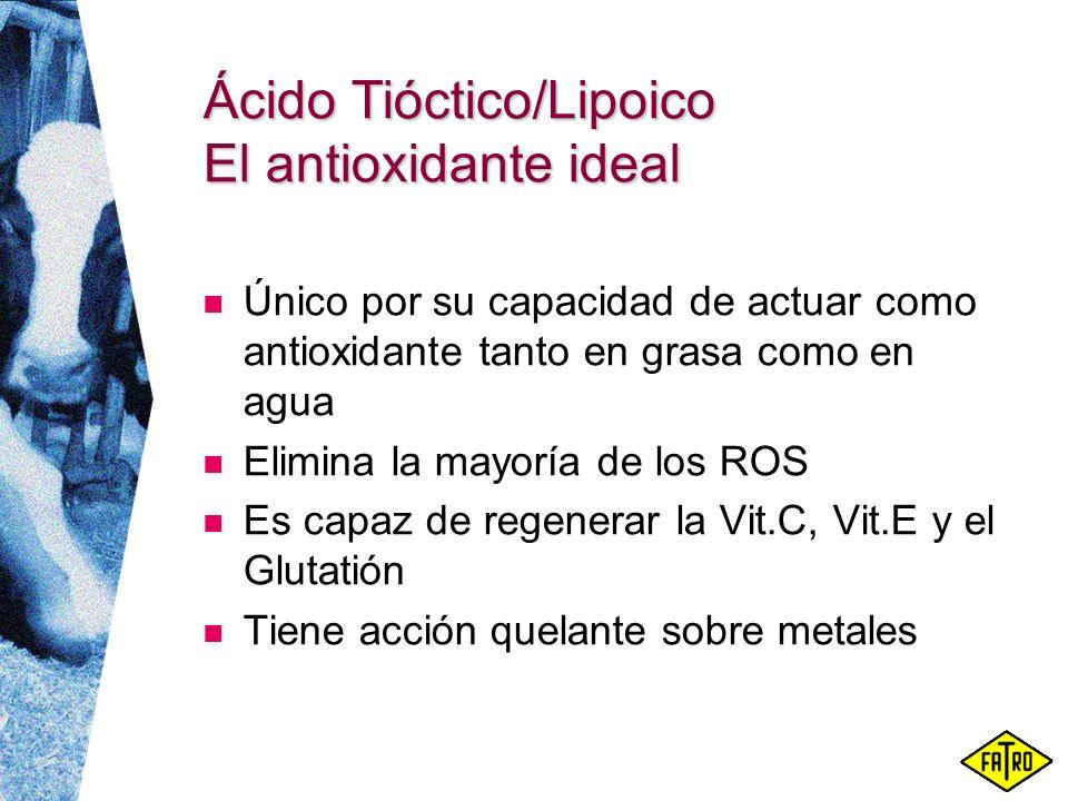 Ácido Tióctico/Lipoico El antioxidante ideal Único por su capacidad de actuar como antioxidante tanto en grasa como en agua Elimina la mayoría de los