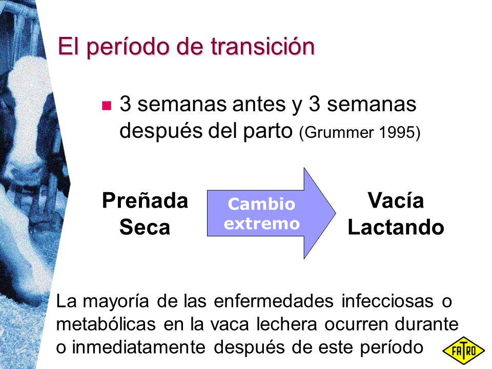 El período de transición 3 semanas antes y 3 semanas después del parto (Grummer 1995) La mayoría de las enfermedades infecciosas o metabólicas en la v