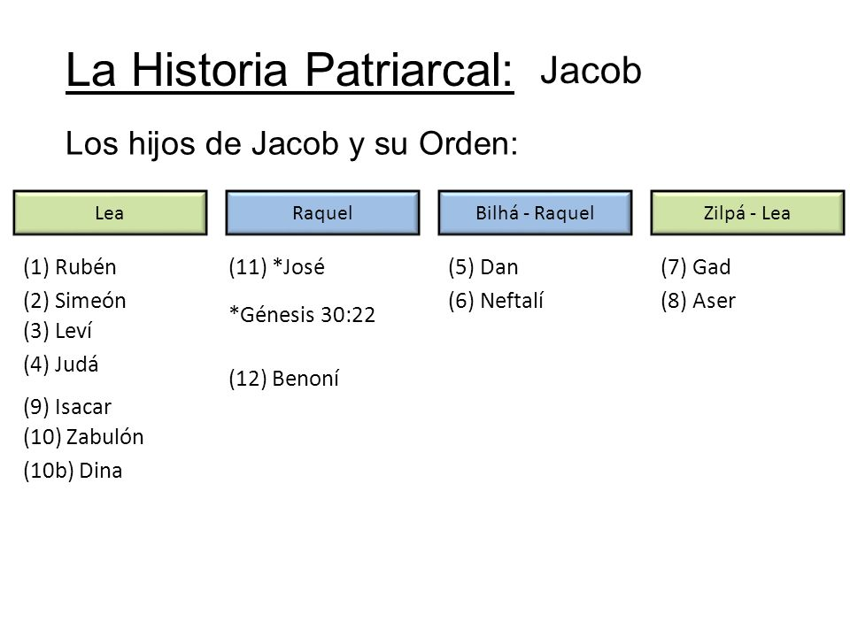 La Historia Patriarcal: Jacob Los hijos de Jacob y su Orden: LeaRaquelBilhá - RaquelZilpá - Lea (1) Rubén (2) Simeón (3) Leví (4) Judá (5) Dan (6) Nef