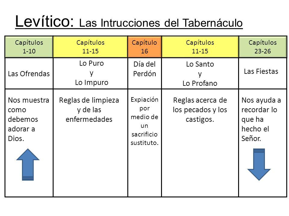 Levítico: Las Intrucciones del Tabernáculo Capítulos 1-10 Las Ofrendas Capítulos 23-26 Capítulos 11-15 Capítulos 11-15 Capítulo 16 Las Fiestas Lo Puro