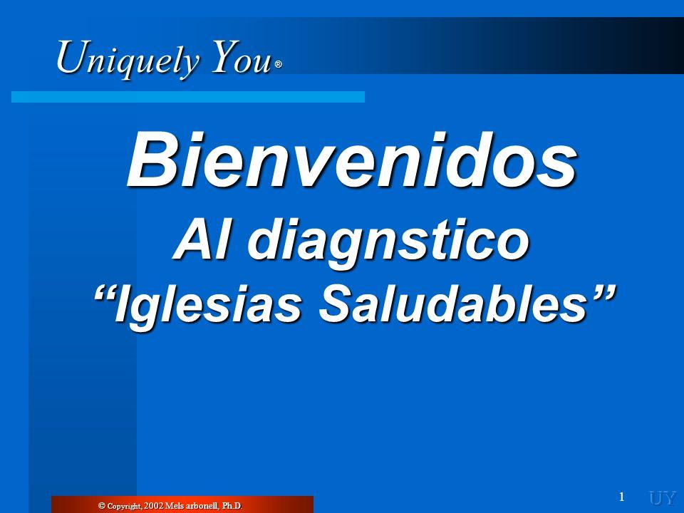 U niquely Y ou ® 1 Bienvenidos Al diagnstico Iglesias Saludables © Copyright, 2002 Mels arbonell, Ph.D.