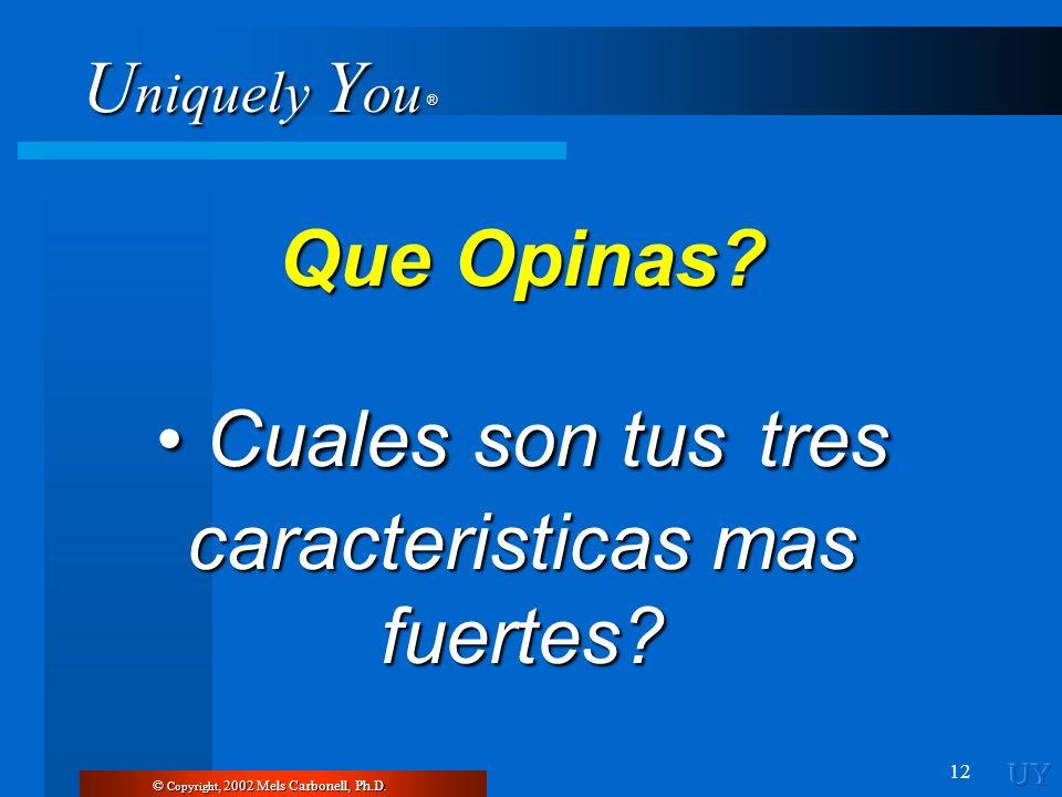 U niquely Y ou ® 12 © Copyright, 2002 Mels Carbonell, Ph.D. Que Opinas? Cuales son tus tres caracteristicas mas fuertes? Cuales son tus tres caracteri