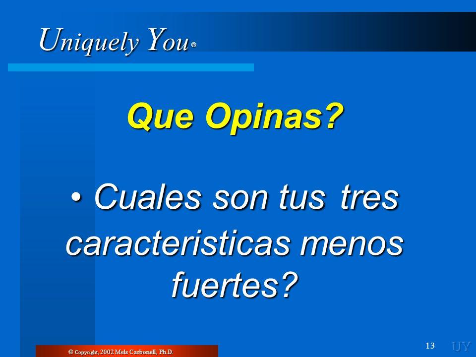 U niquely Y ou ® 13 © Copyright, 2002 Mels Carbonell, Ph.D. Que Opinas? Cuales son tus tres caracteristicas menos fuertes? Cuales son tus tres caracte