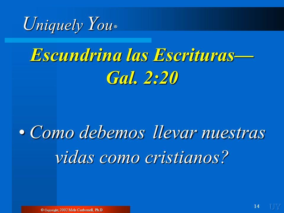 U niquely Y ou ® 14 © Copyright, 2002 Mels Carbonell, Ph.D. Escundrina las Escrituras Gal. 2:20 Como debemos llevar nuestras vidas como cristianos? Co