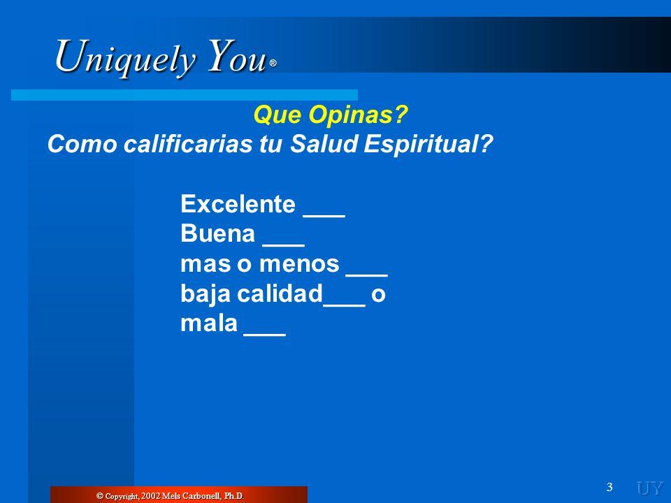 U niquely Y ou ® 3 Que Opinas? Como calificarias tu Salud Espiritual? Excelente ___ Buena ___ mas o menos ___ baja calidad___ o mala ___ © Copyright,