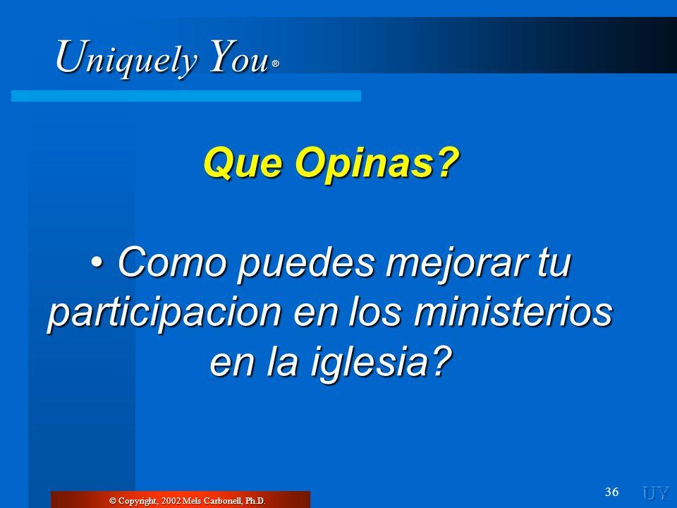 U niquely Y ou ® 36 © Copyright, 2002 Mels Carbonell, Ph.D. Que Opinas? Como puedes mejorar tu participacion en los ministerios en la iglesia? Como pu