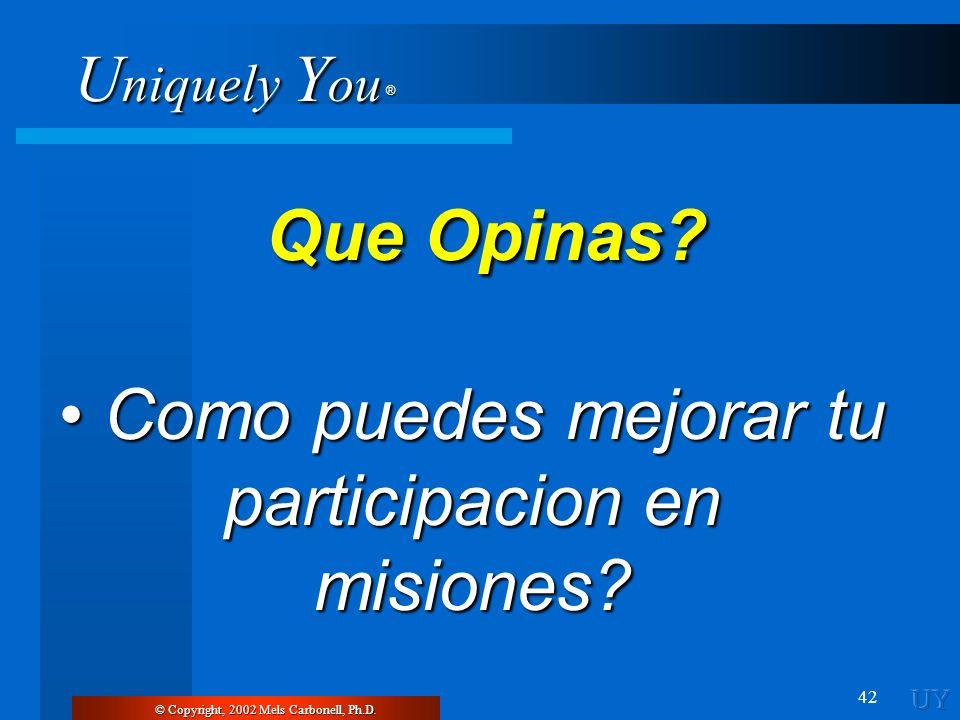 U niquely Y ou ® 42 © Copyright, 2002 Mels Carbonell, Ph.D. Que Opinas? Que Opinas? Como puedes mejorar tu participacion en misiones? Como puedes mejo