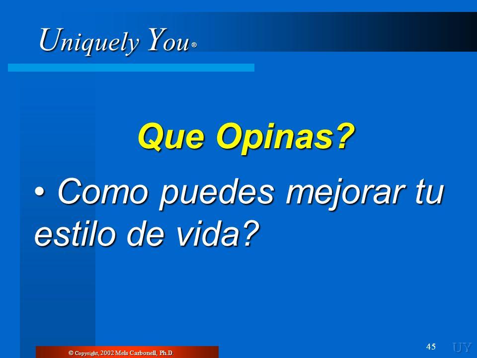 U niquely Y ou ® 45 © Copyright, 2002 Mels Carbonell, Ph.D. Que Opinas? Como puedes mejorar tu estilo de vida? Como puedes mejorar tu estilo de vida?