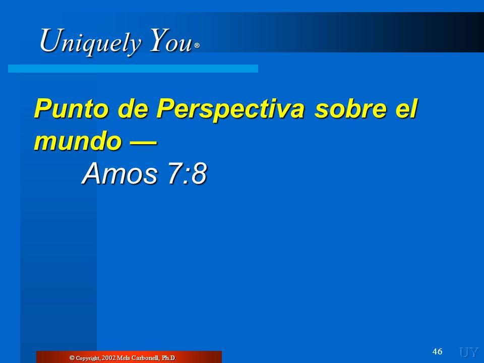 U niquely Y ou ® 46 Punto de Perspectiva sobre el mundo Punto de Perspectiva sobre el mundo Amos 7:8 Amos 7:8 © Copyright, 2002 Mels Carbonell, Ph.D.