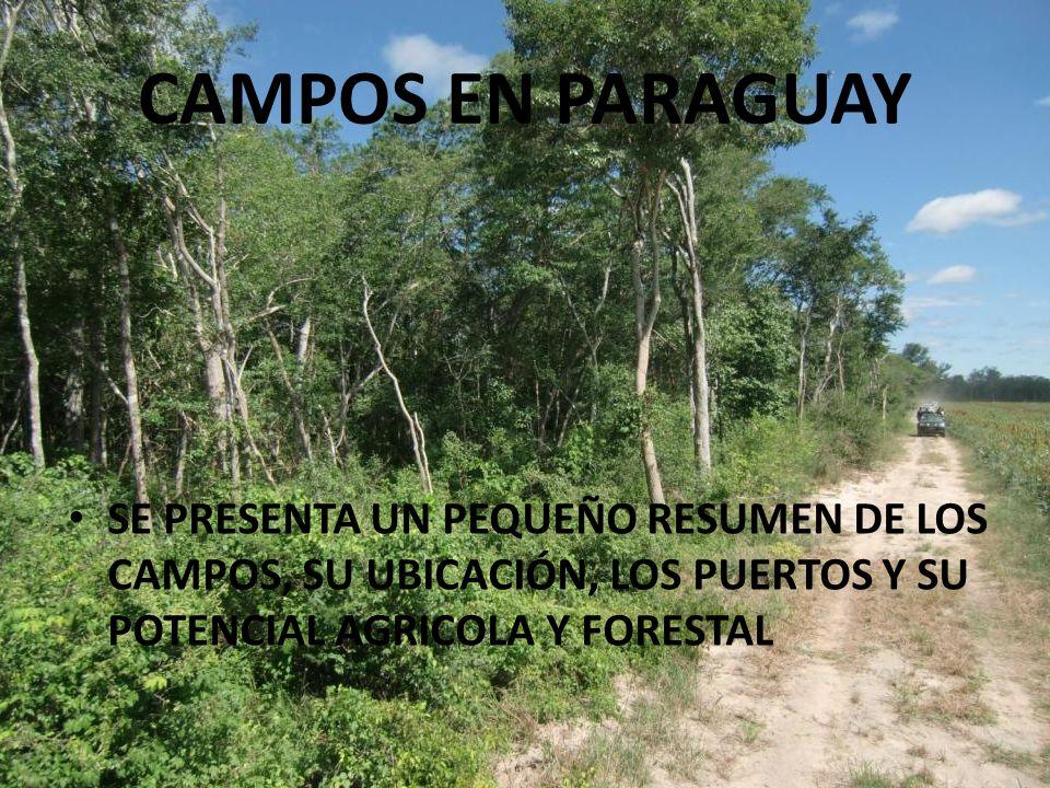 CAMPOS EN PARAGUAY SE PRESENTA UN PEQUEÑO RESUMEN DE LOS CAMPOS, SU UBICACIÓN, LOS PUERTOS Y SU POTENCIAL AGRICOLA Y FORESTAL