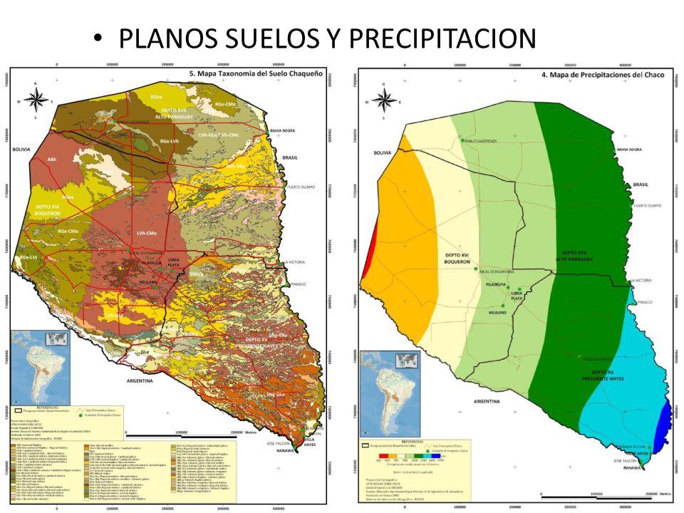 PLANOS SUELOS Y PRECIPITACION