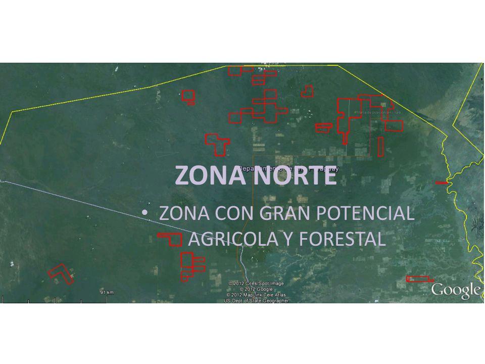 ZONA NORTE ZONA CON GRAN POTENCIAL AGRICOLA Y FORESTAL