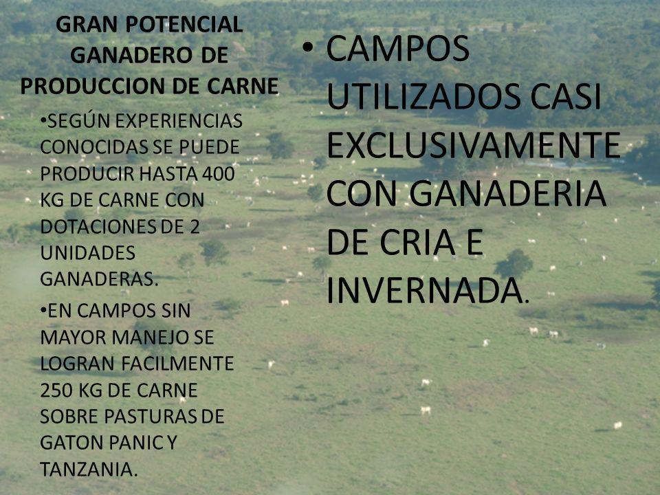 GRAN POTENCIAL GANADERO DE PRODUCCION DE CARNE CAMPOS UTILIZADOS CASI EXCLUSIVAMENTE CON GANADERIA DE CRIA E INVERNADA. SEGÚN EXPERIENCIAS CONOCIDAS S