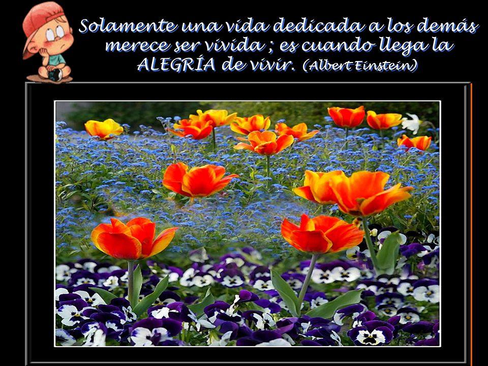 «LA ALEGRÍA ES NECESARIA…» ( MÚSICA «LA ALEGRÍA ES NECESARIA…» ( MÚSICA : Richard Clayderman) - Un jardín de flores, da ALEGRÍA. - Sus semillas crean