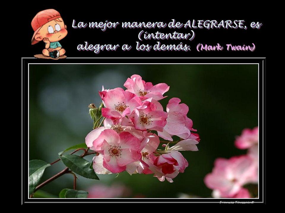 La ALEGRÍA, cuanto más se da y se gasta, más queda. (R.Waldo Emerson) La ALEGRÍA, cuanto más se da y se gasta, más queda. (R.Waldo Emerson)
