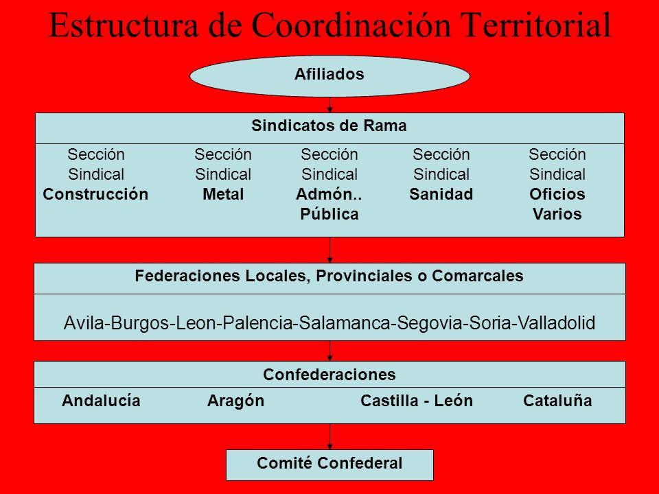 Estructura de Coordinación Territorial En CGT además de existir la posibilidad de constituir sindicatos de rama y federaciones locales, provinciales o comarcales, como formas de coordinación existen otras dos figuras: Sindicatos Multisectoriales y Sindicatos Únicos Sindicatos Multisectoriales Son los que agrupan a mas de un sector, y se constituyen con miras a la eficacia sindical u organizativa.