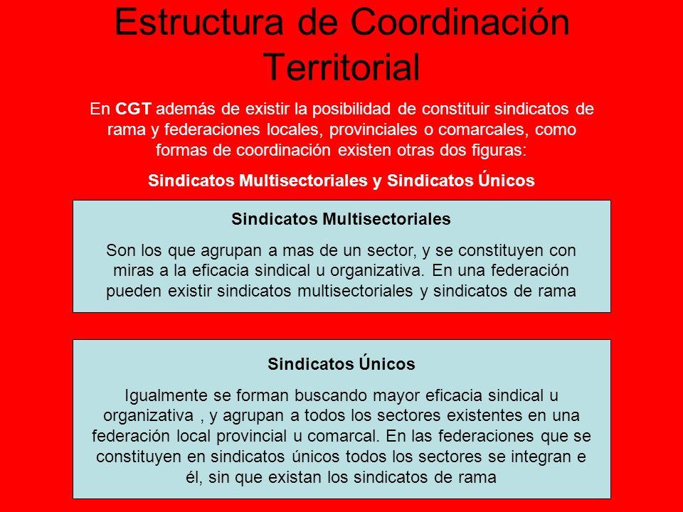 Estructura de Coordinación Territorial Secciones Sindicales Sindicatos Federación Sectorial Territorial Federación Sectorial Estatal Comité Confederal La estructura sectorial esta enfocada a coordinar y desarrollar la actuación en ese sector.