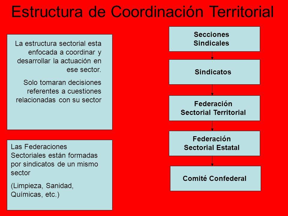 Estructura de Coordinación Territorial Secciones Sindicales Sindicatos Federación Sectorial Territorial Federación Sectorial Estatal Comité Confederal