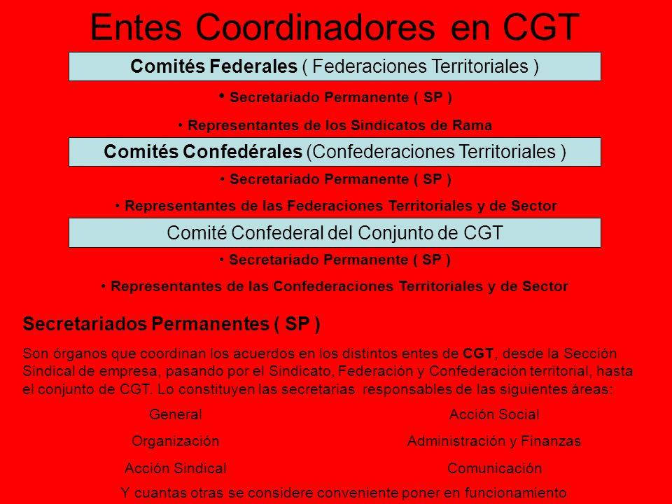Entes Coordinadores en CGT Comités Federales ( Federaciones Territoriales ) Secretariado Permanente ( SP ) Representantes de los Sindicatos de Rama Co