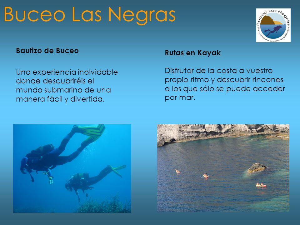 Bautizo de Buceo Una experiencia inolvidable donde descubriréis el mundo submarino de una manera fácil y divertida.