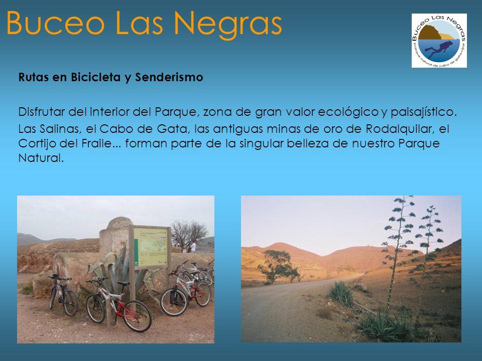 Rutas en Bicicleta y Senderismo Disfrutar del interior del Parque, zona de gran valor ecológico y paisajístico.