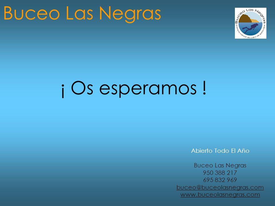 Abierto Todo El Año Buceo Las Negras 950 388 217 695 832 969 buceo@buceolasnegras.com www.buceolasnegras.com Buceo Las Negras ¡ Os esperamos !