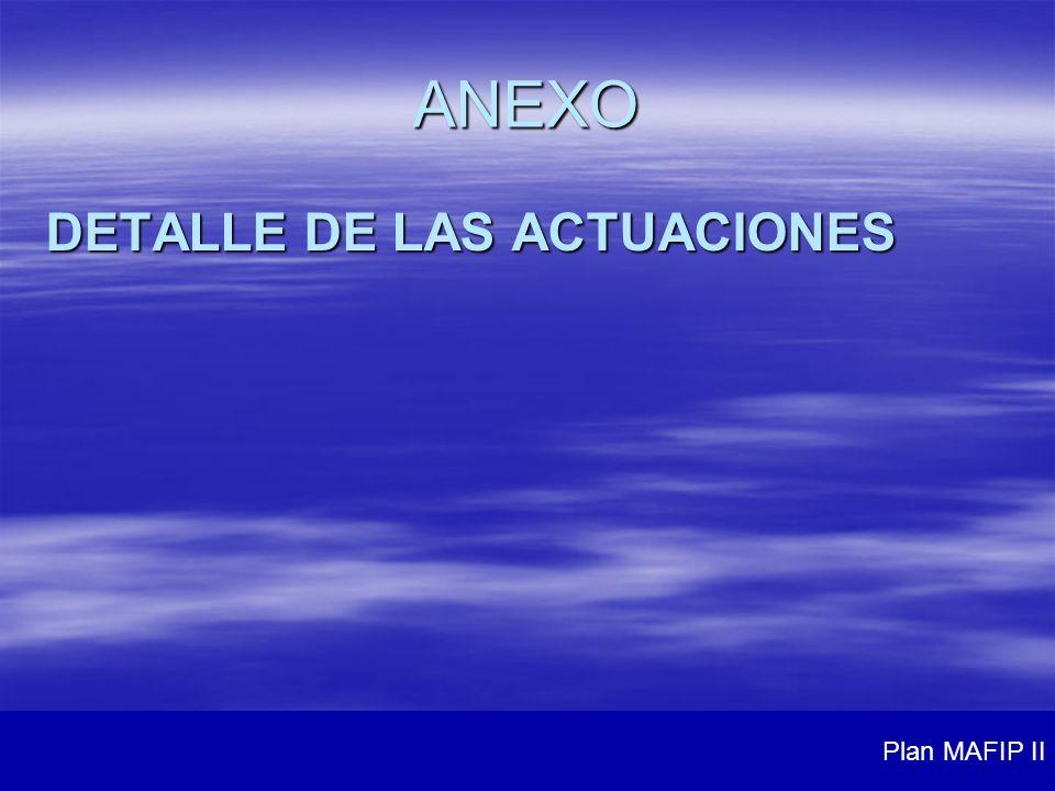 ANEXO DETALLE DE LAS ACTUACIONES Plan MAFIP II